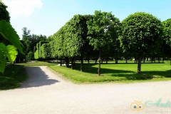 Аллеи французского парка