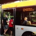 singa_bus-08