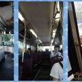 singa_bus-12