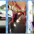singa_bus-21