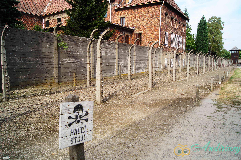 """Концлагерь """"Освенцим"""""""
