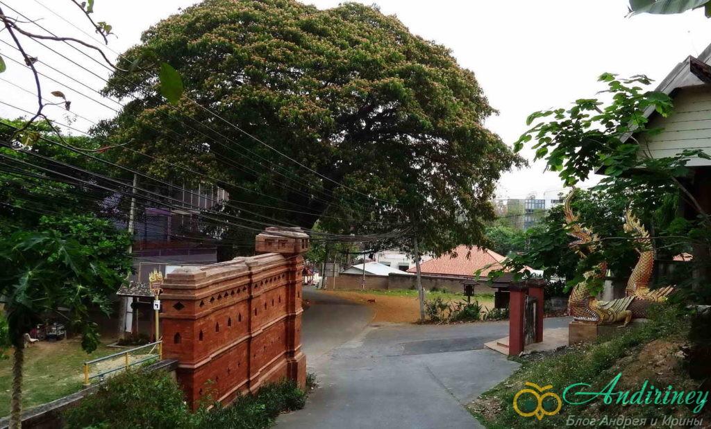 Чианграй. Wat Ngam Muang