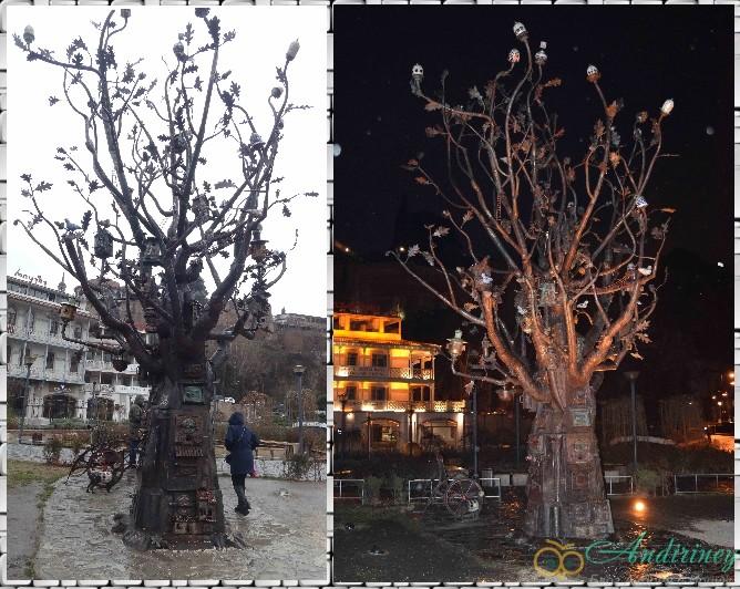 Тбилиси. Железное дерево