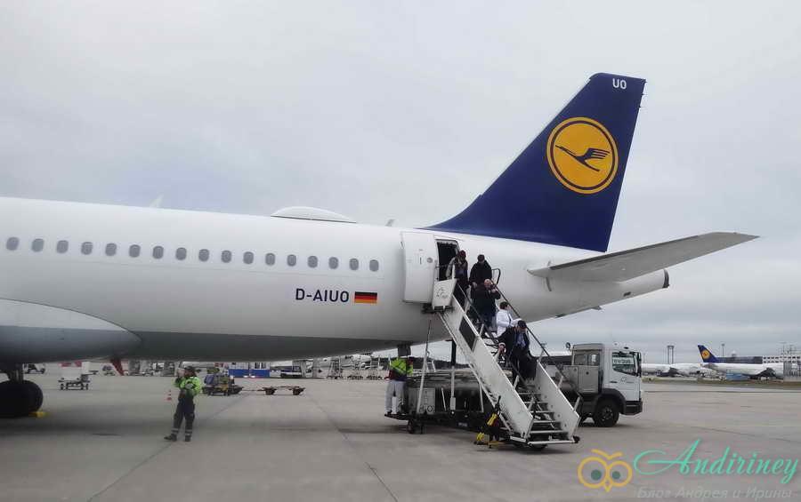 Как кормят в Lufthansa